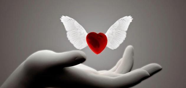 أقوى درجات الحب