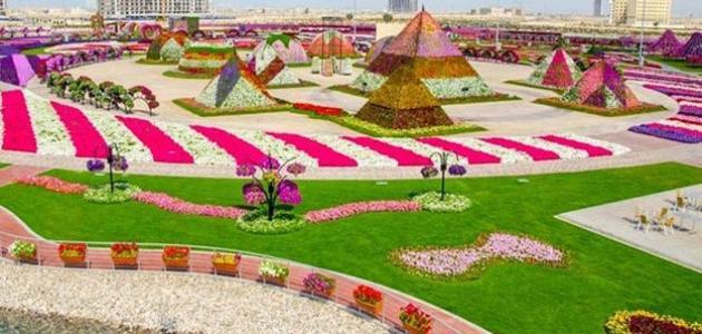 حديقة الزهور في دبي موضوع
