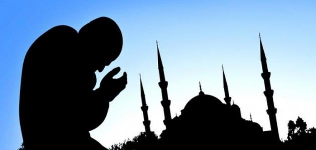 عدد الصلوات في اليوم