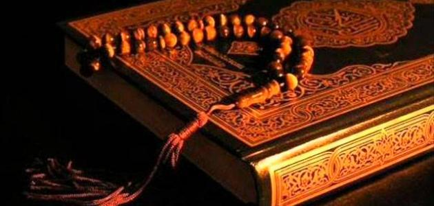 كم عدد السور المدنية في القرآن