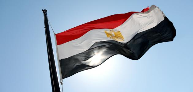 أكبر دولة عربية من حيث السكان