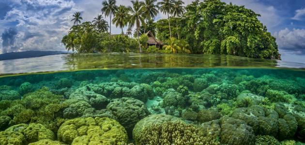 جزر سولومون