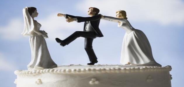 كيف العدل بين الزوجتين موضوع