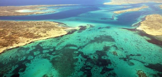 جزيرة دهلك