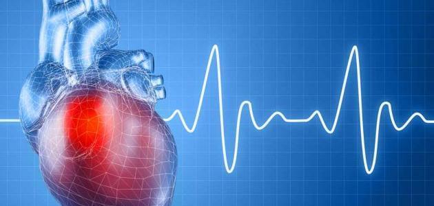 عدد دقات قلب الإنسان في الدقيقة