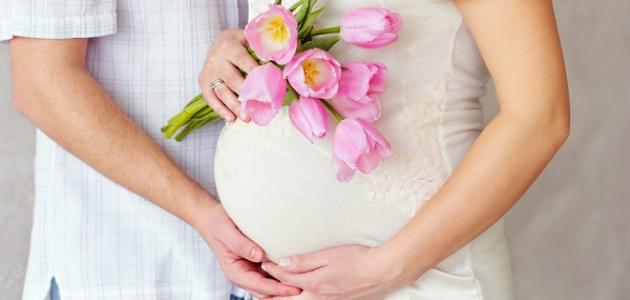 عدد أشهر الحمل