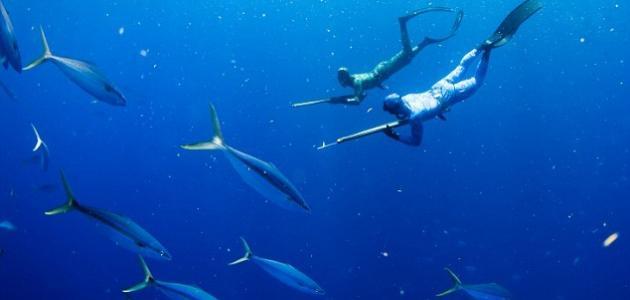 الصيد تحت الماء