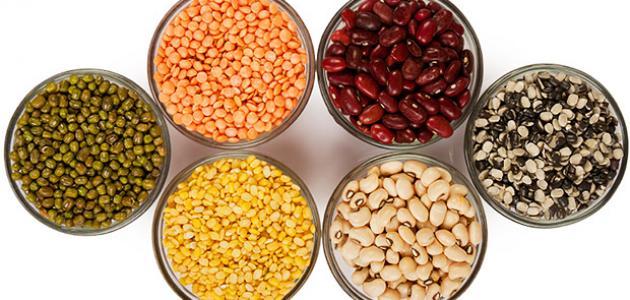 الأكل الذي يحتوي على البروتين