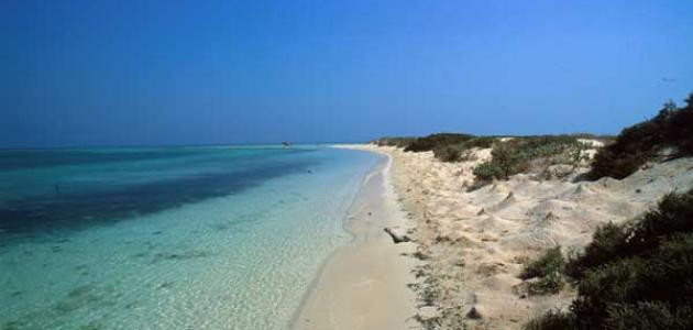 جزيرة فرسان في السعودية