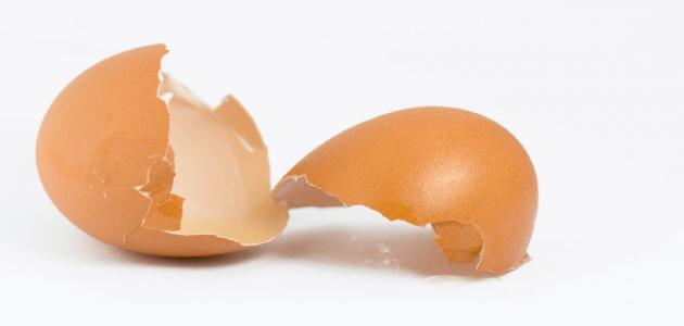 فوائد قشر البيض للوجه