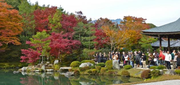 حديقة اشاكيكا اليابان