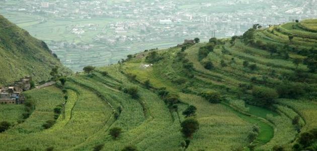 محافظة إب اليمن