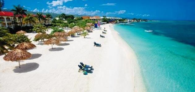 أين تقع مدينة جامايكا