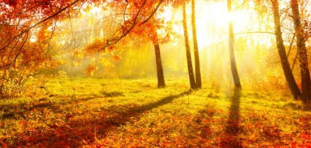 خصائص فصل الخريف