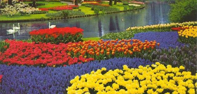 بحث حول فصل الربيع