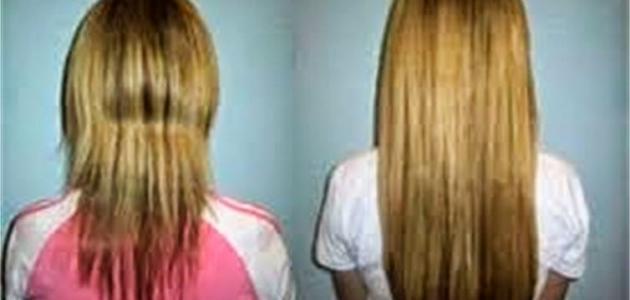 كيف الشعر يطول بسرعة