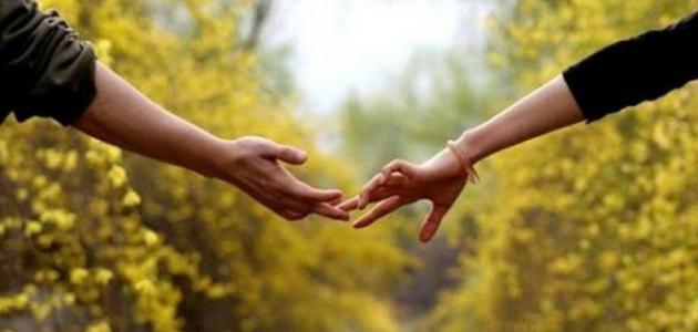 بحث عن الحب والعشق