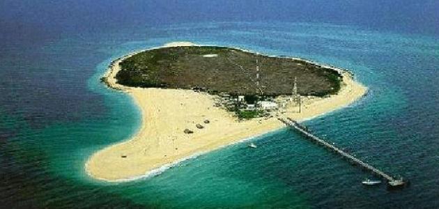 جزيرة تابعة للكويت