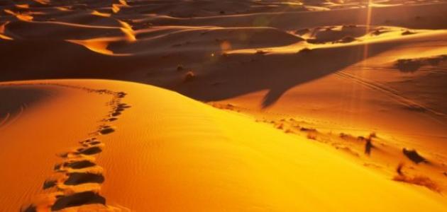 أعلى درجة حرارة سجلت في السعودية