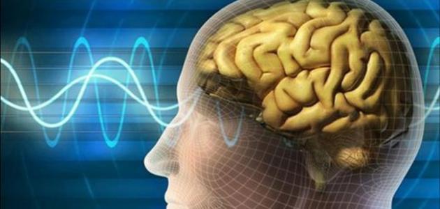 تعريف علم النفس الفسيولوجي
