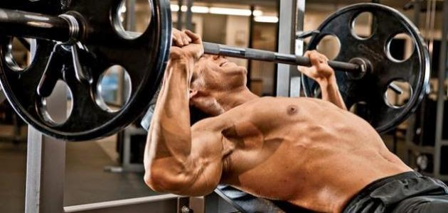 كيف أبني عضلات ضخمة