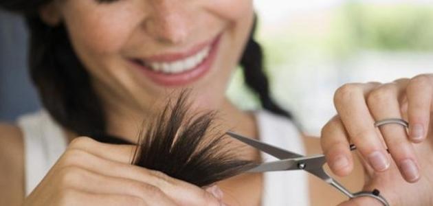 حماية الشعر من التقصف