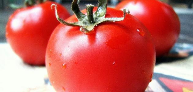 كيف أخزن الطماطم