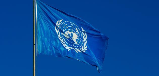 الآليات الدولية لحماية حقوق الإنسان