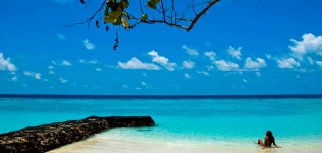 جزر المارتينيك