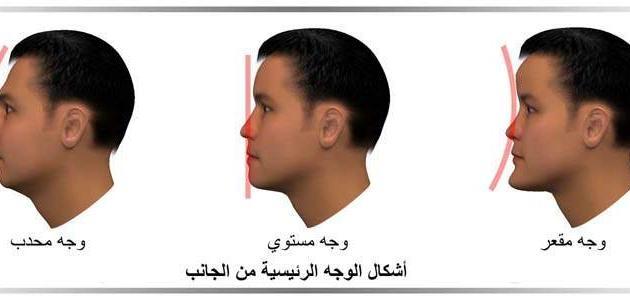 ملامح الوجه والشخصية