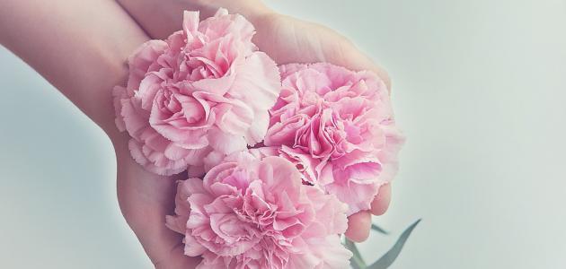 """قوة الحب والتسامح ظ'ظˆط©_ط§ظ""""طط¨_ظˆط§ظ""""طھط³ط§ظ…ط.jpg"""