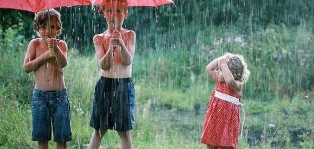 فوائد مياه الأمطار