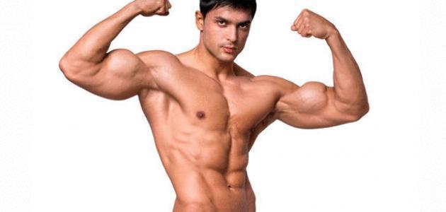 قوة العضلات