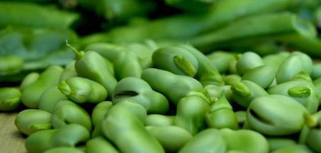 فوائد الفول الأخضر للرجيم