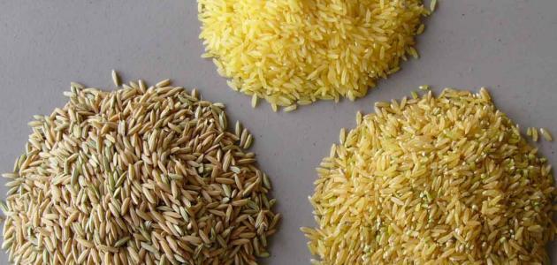 عدد السعرات الحرارية في الأرز