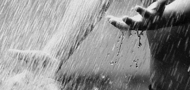 ما الفرق بين المطر والغيث