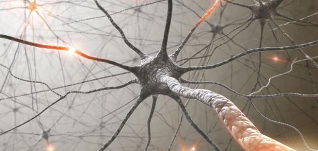 كيف تقوي عصب يدك