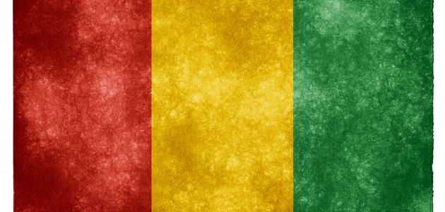 ما عاصمة غينيا