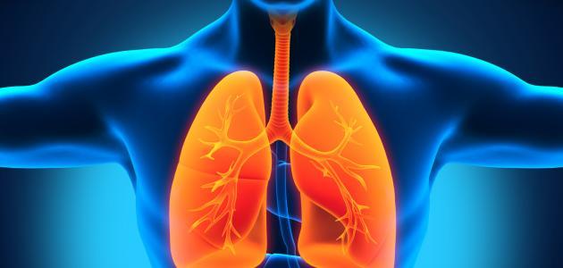 ما سبب امراض القلب