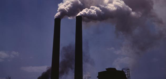 ما هي أضرار تلوث البيئة