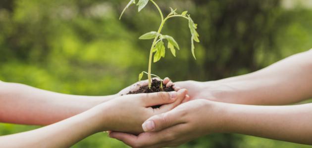تعبير عن فوائد عمل الخير والمعروف اجتماعياً