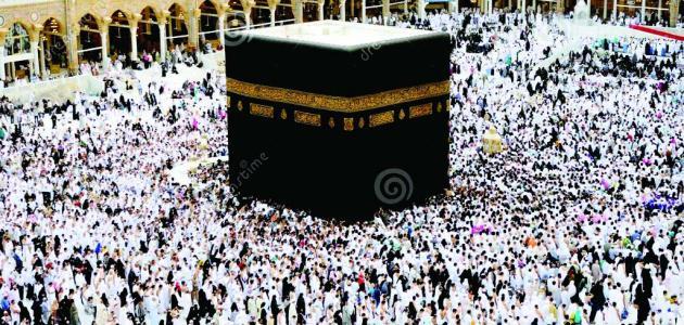 ما هو عدد المسلمين في العالم