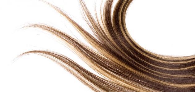 طريقة زيادة كثافة الشعر