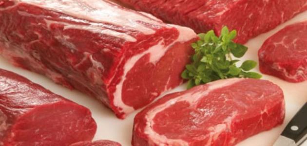 ما فوائد لحم الجمل