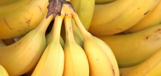 ما فائدة الموز