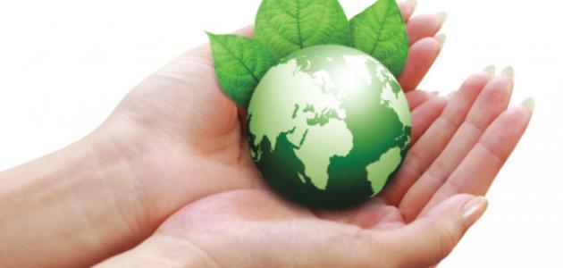 مقال عن كيفية المحافظة على البيئة