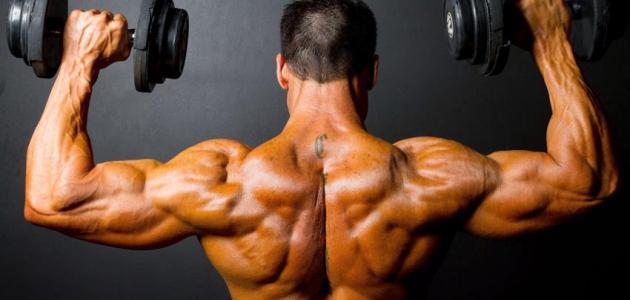 هل تمارين الحديد تخفض الوزن