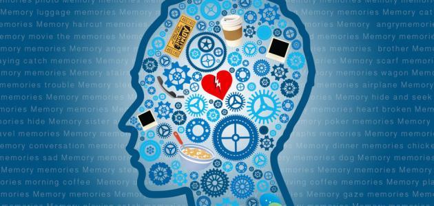 مفهوم علم النفس المعرفي