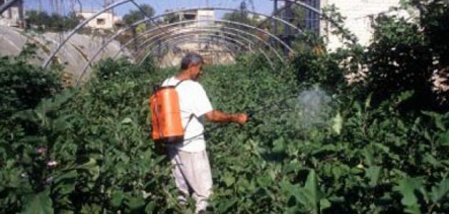 مفهوم الزراعة العضوية