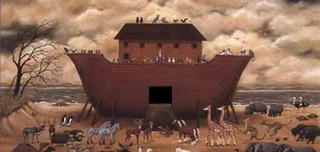 ماذا كان يعمل سيدنا نوح